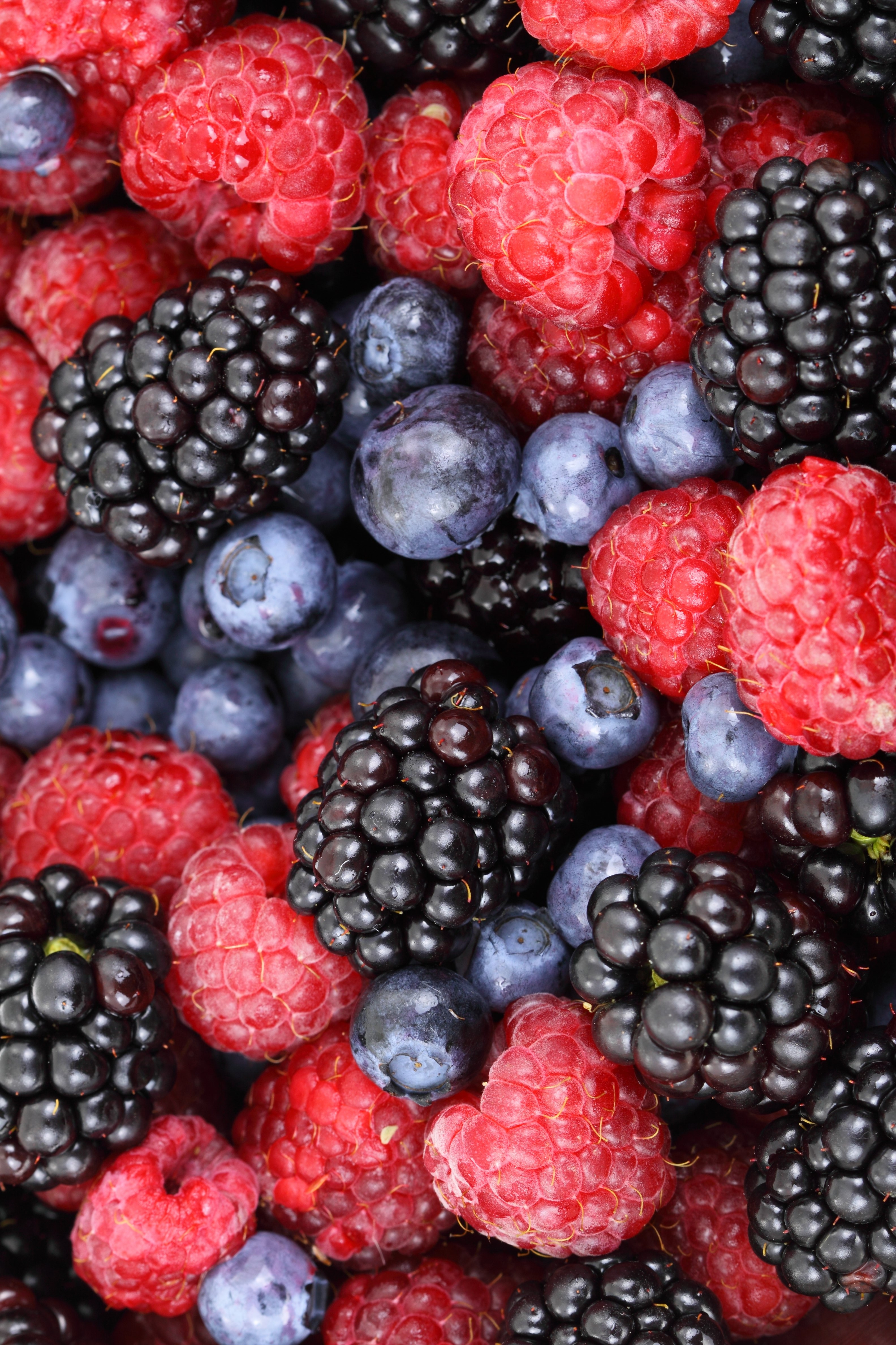 7705.berries